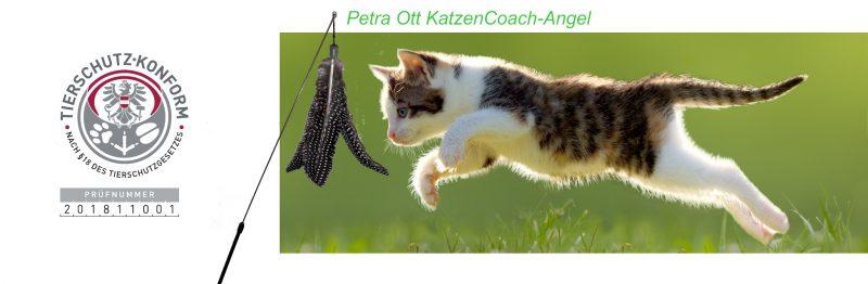 Petra Ott Katzencoach angel mit Tierschutzkennzeichen