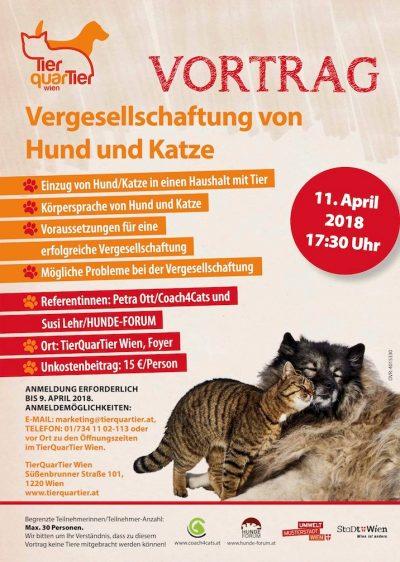 petra ott copyright vergesellschaftung hund und katze
