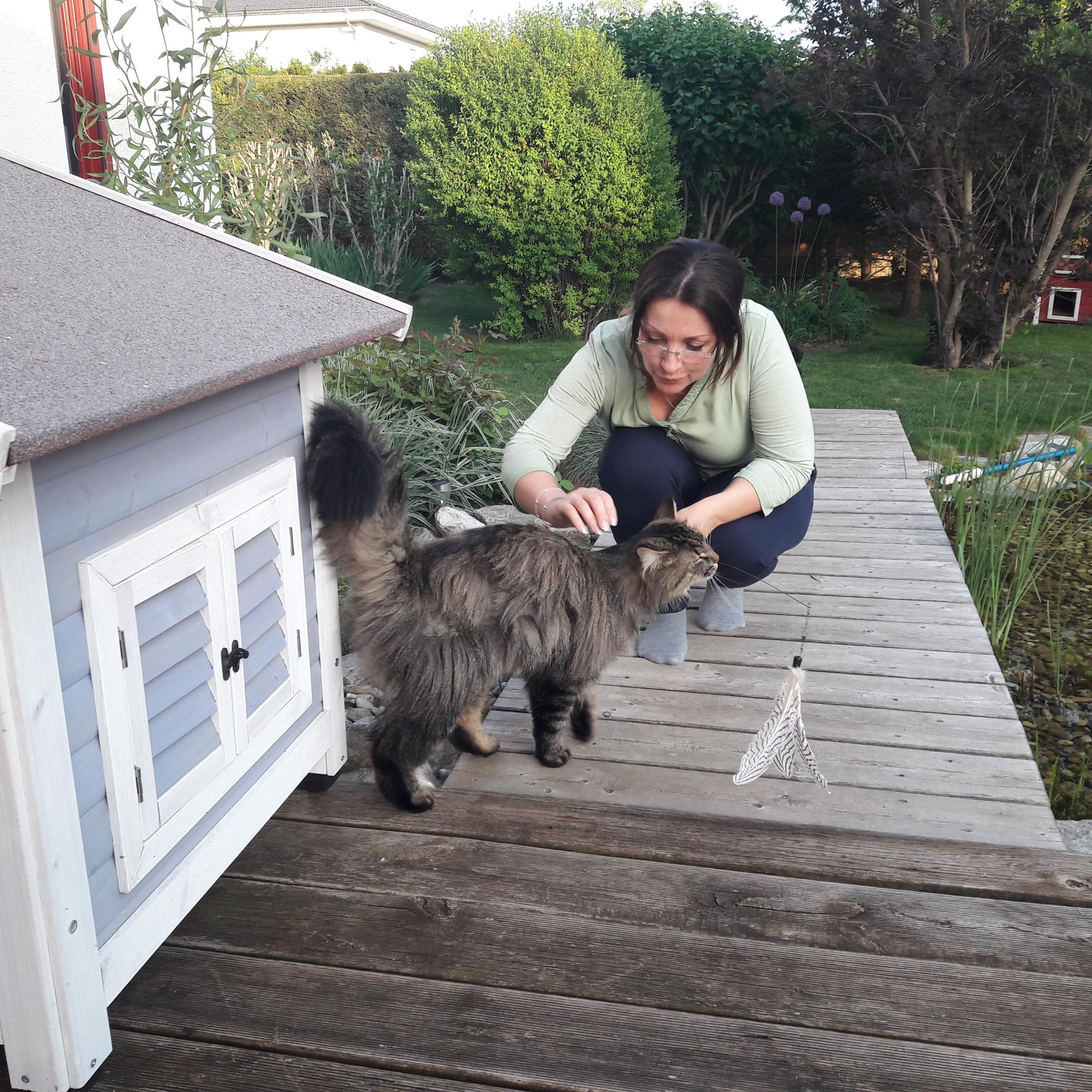 Katzensitter Ausweis mit Trainer Petra Ott @petraott aCATemy Katzenschule