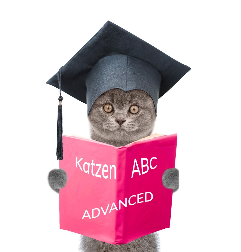 Onlinekurs: Kommunikation und Körpersprache der Katze ADVANCED @petraott Katzenschule acatemy