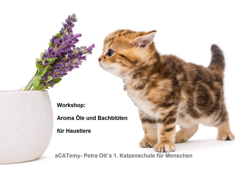 Workshop Aromaöle und Bachblüten für Hausitere in der aCATemy