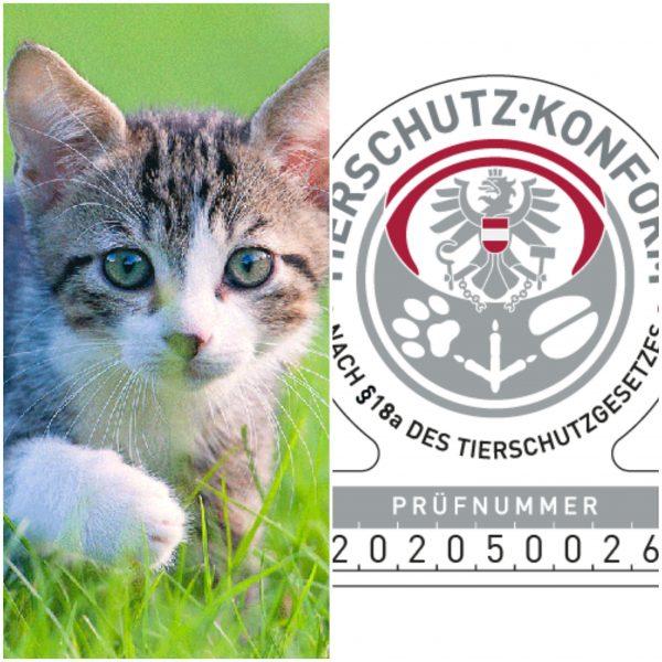 Katzenführerschein Katznkundenachweis @petraott acatemy Katzenschule