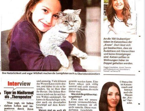 Artikel in der Kronen Zeitung