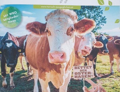 Artikel in Das Fachmagazin für Tierberufe – Tierisch ausgeglichen