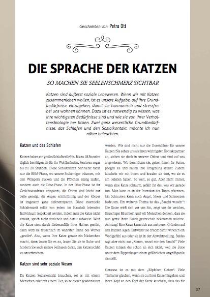 Artikel INSIDER Magazin