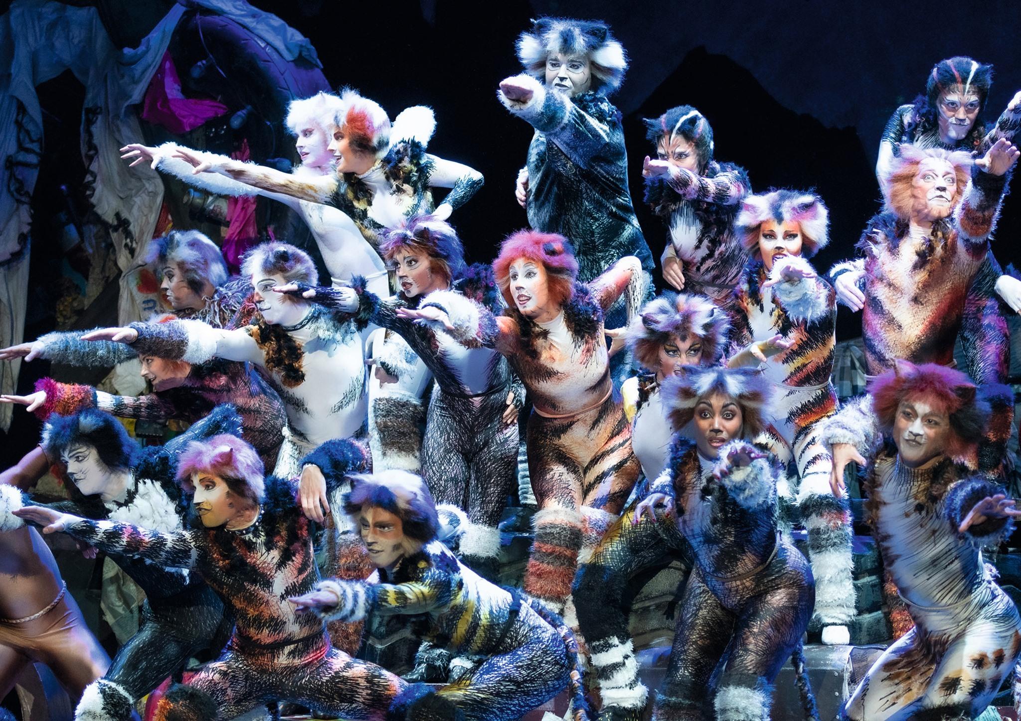 Bilder: Musical Vienna Presse CATS Wien / ©Deen van Meer