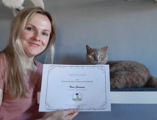 1te KatzenLifeCoachin der aCATemy sagt: Ein Leben ohne Katze – unvorstellbar!