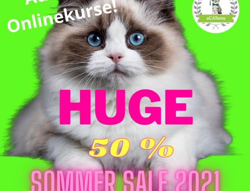 🤩50% Sommer Sale 2021 in der aCATemy – Petra Ott´s Katzenschule für Menschen!😻