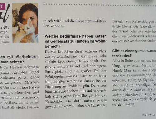 Interview mit Petra Ott im Magazin Moments